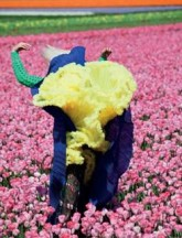 Viviane Sassen, In Bloom, for Dazed & Confused, 2011 © the artist